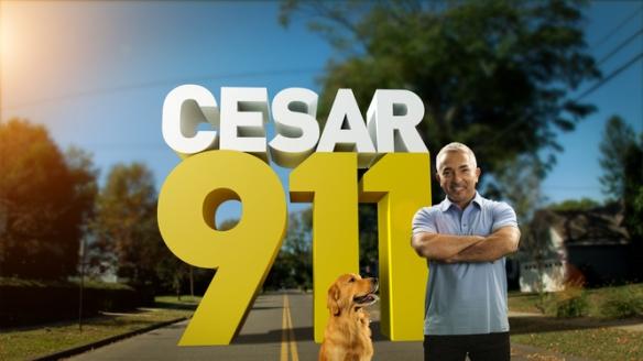 Cesar 911 = Cesar K9 (Canine) (11=K)