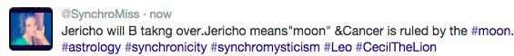 SynchroMiss twitter